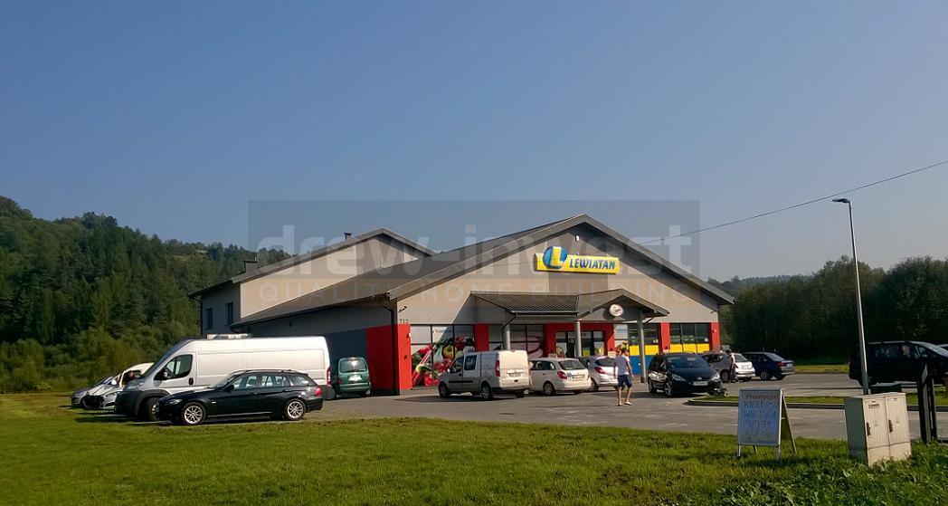 Budzow-Lewiatan-793-1.jpg